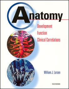 Anatomy: Development, Function, Clinical Correlations